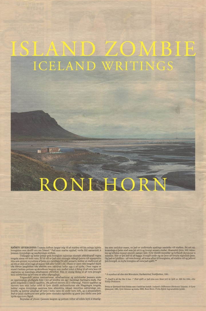 Roni Horn's Memories and Meditations About Weather