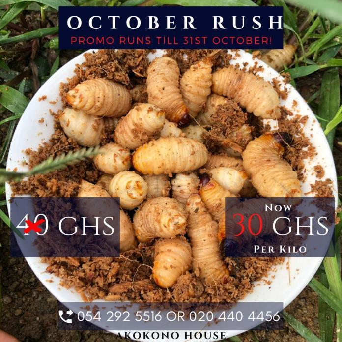 "Akokono House launches ""October Rush"" promo for Customers"