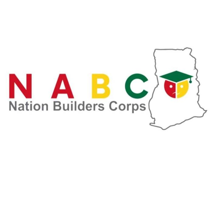 How to Login into the NABCO Portal without any challenge