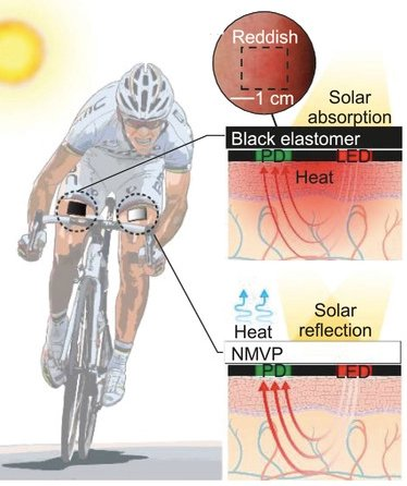 Wearables are amongst a few electronic groups that have direct exposure to human skin and sunlight.