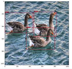 reduce computer vision inference latency using grpc with tensorflow serving on amazon sagemaker 2 hyperedge embed image