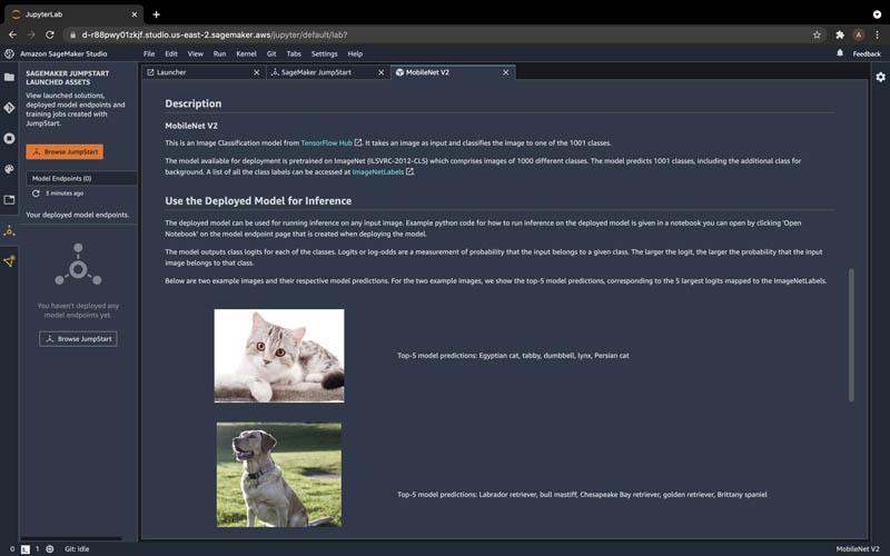 run image classification with amazon sagemaker jumpstart 5 hyperedge embed image