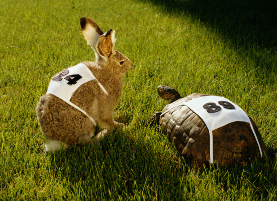 the tortoise and the hare story is playing out right now in vc hyperedge embed