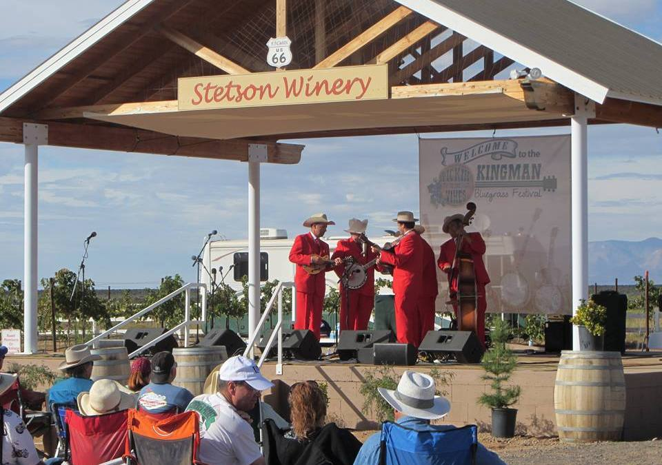 Arizona Winery Launches Through Web Design and Social Media