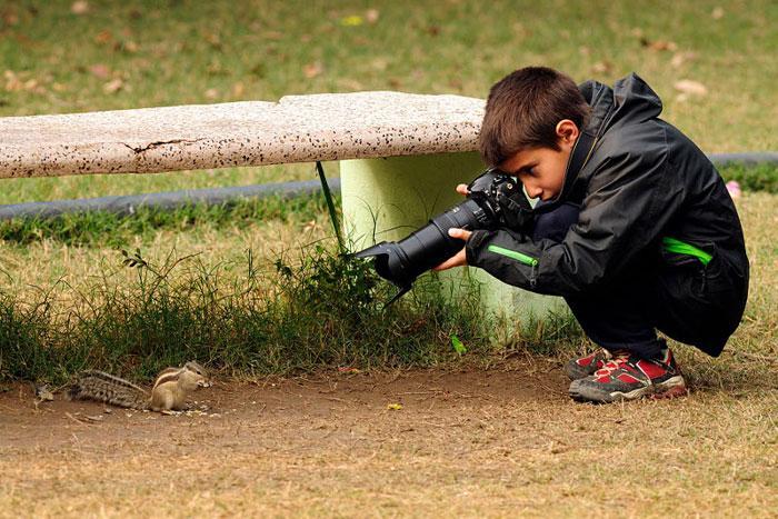 fotografo de vida selvagem carlos perez naval (12)