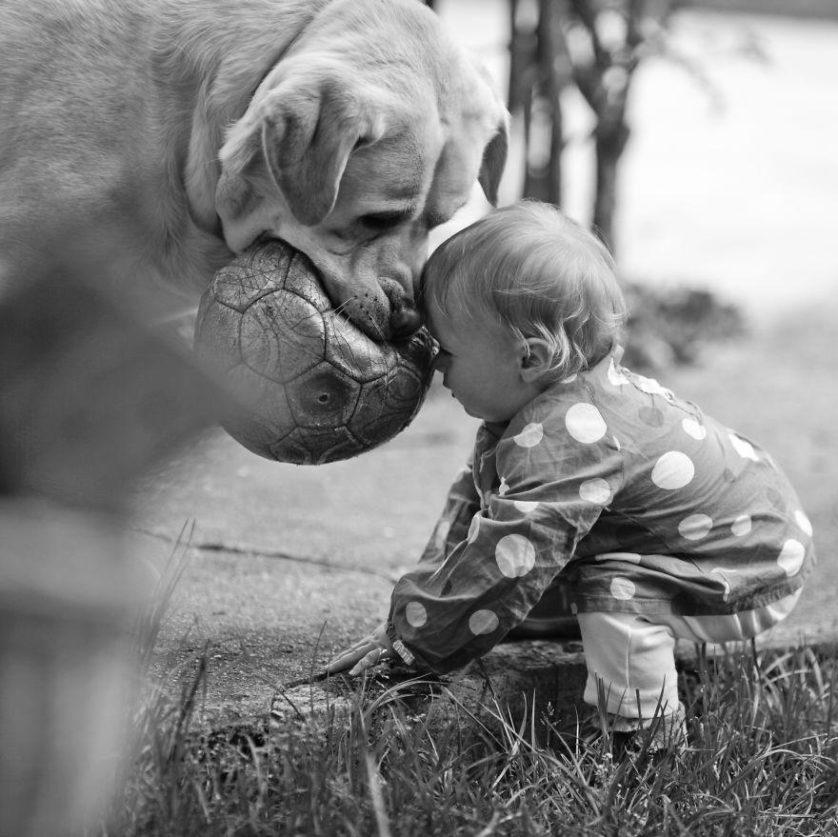 bebes e cachorros (26)