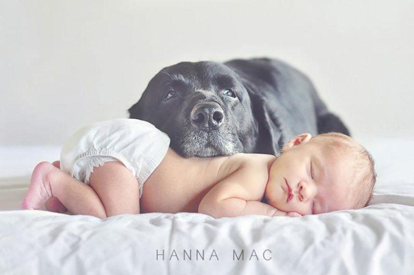 bebes e cachorros (5)