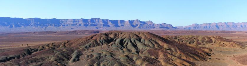 Fósseis podem mudar muito do que sabemos sobre evolucao (1)