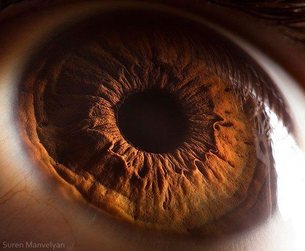 closes olho humano (20)