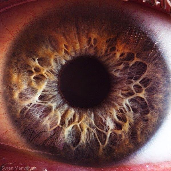 https://i1.wp.com/hypescience.com/wp-content/uploads/2016/02/closes-olho-humano-5.jpg