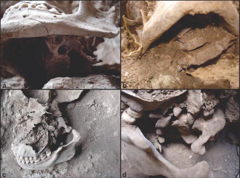 rituais-macabros-brasil-3