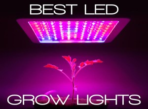 best led grow lights 2022