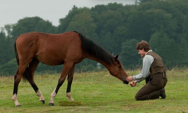 le cheval, le fermier et les deux revers de la médaille
