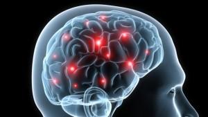 cerveau-conscience