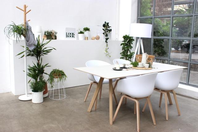 Interiorblog zeigt Esszimmer mit Designermöbel