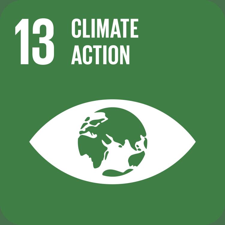 UN SDG Goal 13