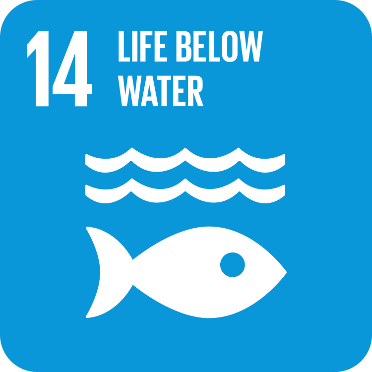 UN SDG Goal 14
