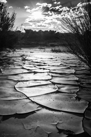Recent rain still visible at Goblin Valley State Park