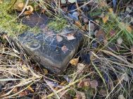 Luonto oli nielaissut sisäänsä runsaasti vanhoja rakenteita.