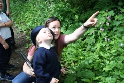 Yeovil Country Park (28)