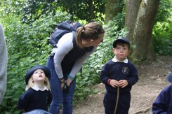 Yeovil Country Park (29)
