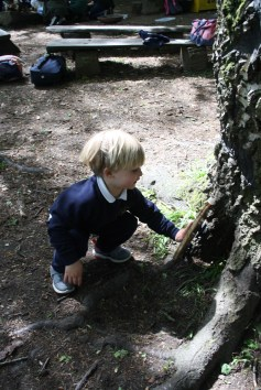 Yeovil Country Park (38)