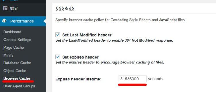 pagespeed43