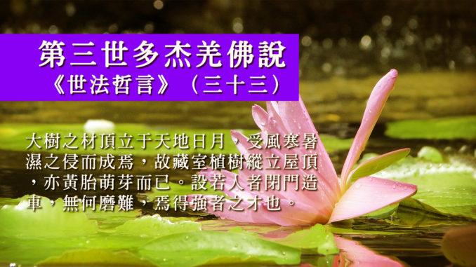 第三世多杰羌佛說《世法哲言》(三十三)
