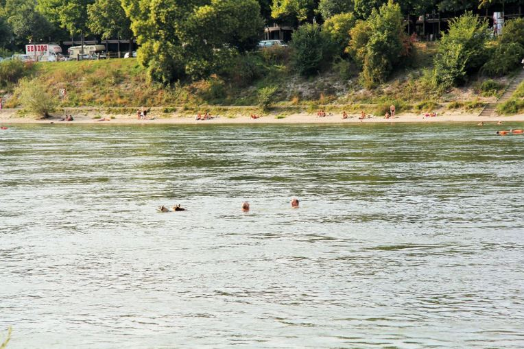 nager au rhin