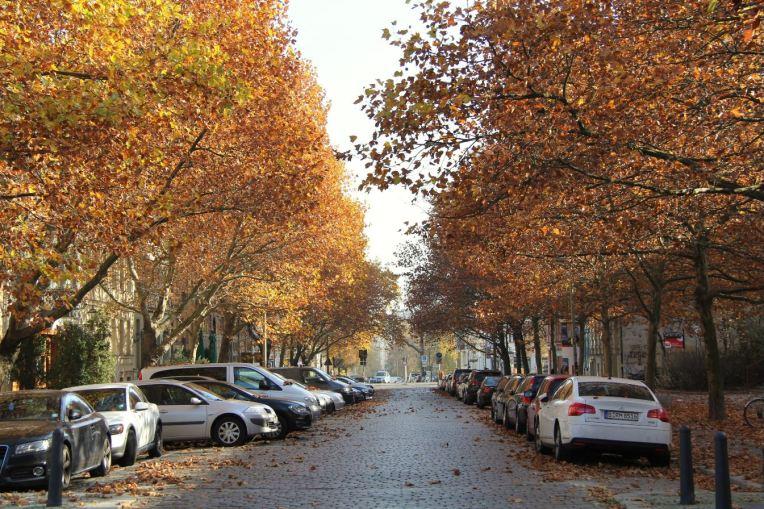 rue berlinoise en automne