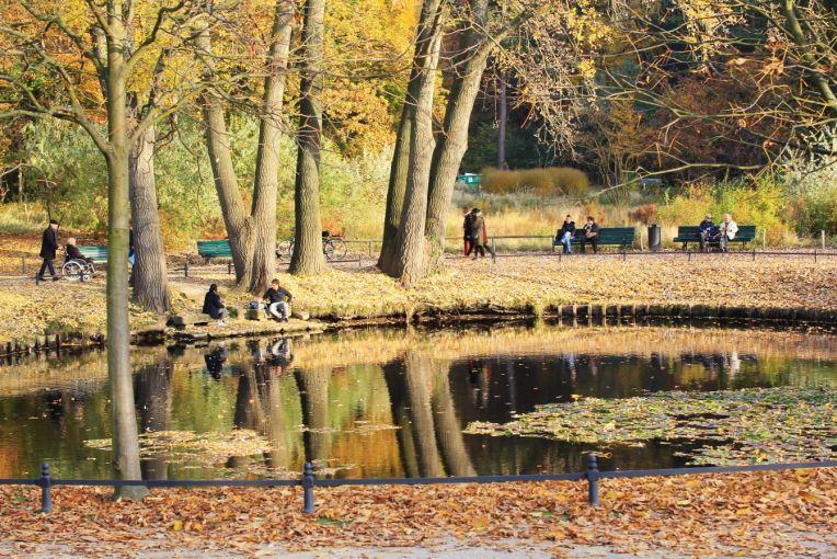 mini lac tiergarten automne