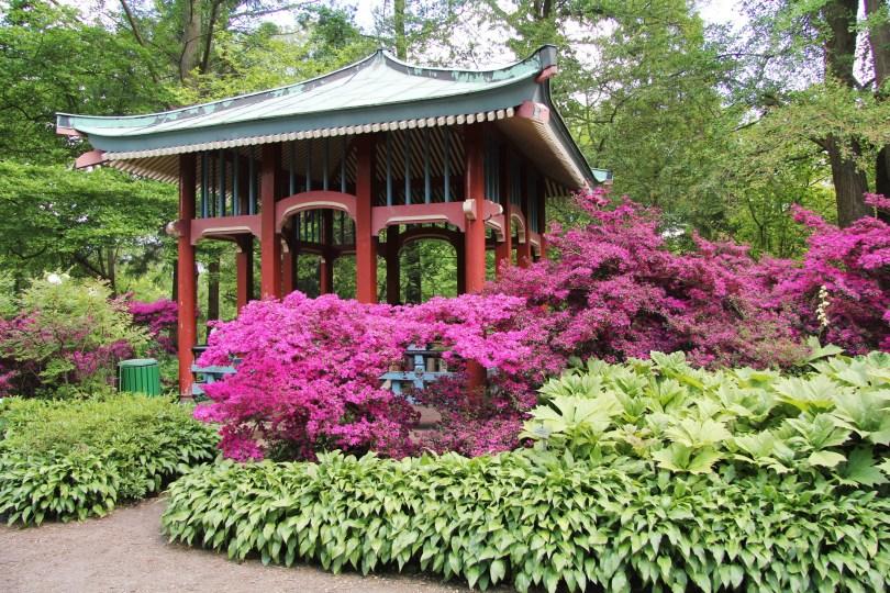 pavillon chinois jardin botanique berlin