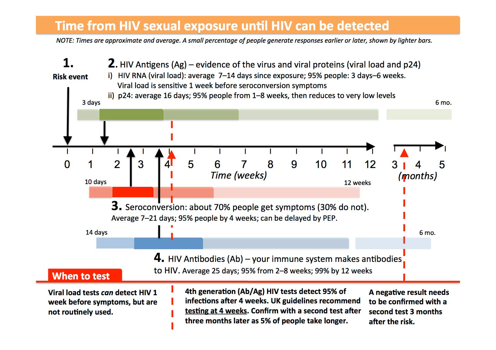 Timeline For Immune Responses And Testing