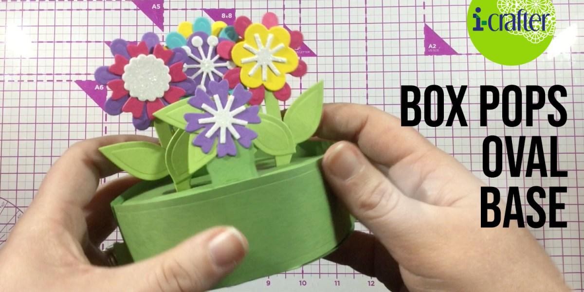 Box Pops Oval Base