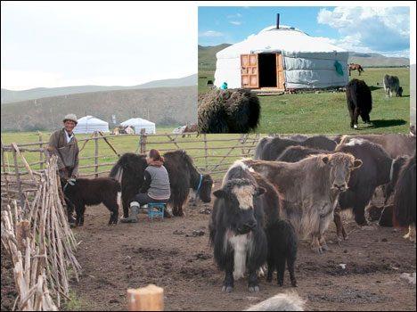crazy-vacation-spots-jurt-mongolia