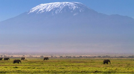 arusha Kilimandjaro Amboseli national park