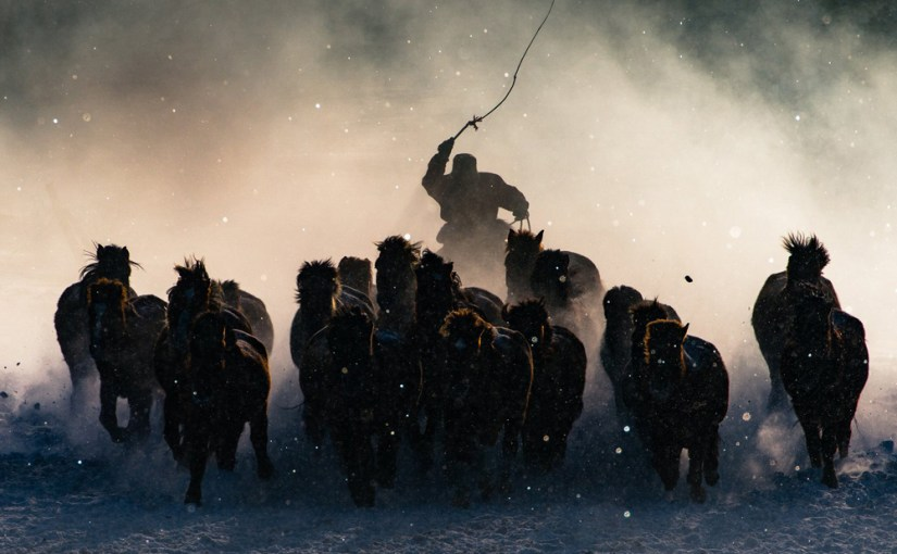national geographic travel photos year