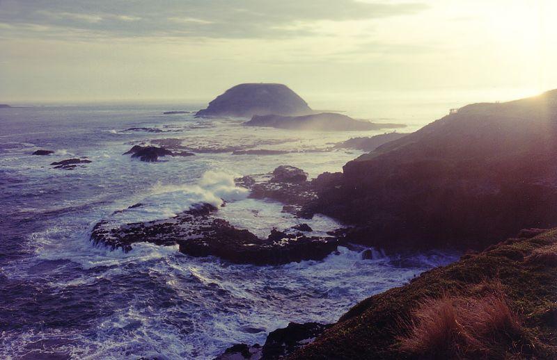 Phillip Island. The Nobbies Round Island. Photo by Chili.