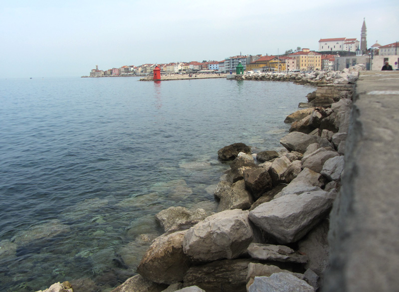 View of Piran from the southside port Photo Chili