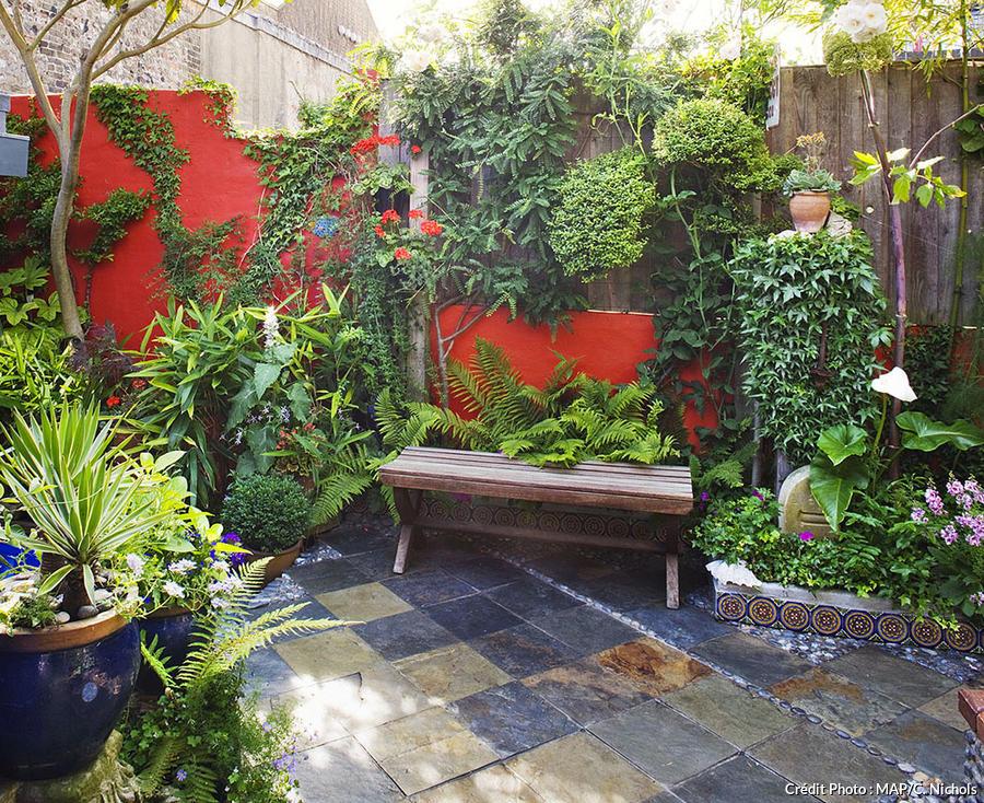 petit jardin le guide d amenagement