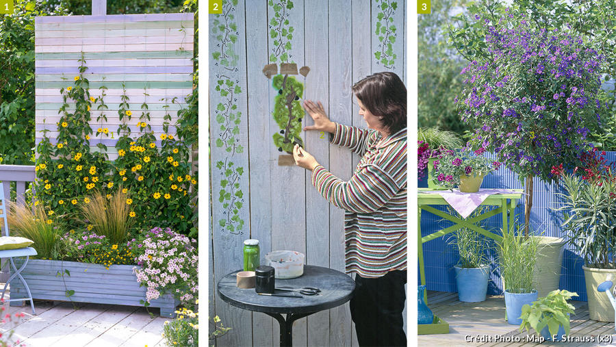 brise vue pour jardin plante