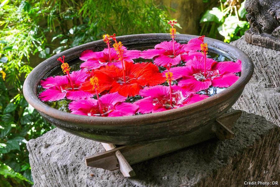 3 vasques fleuries a realiser