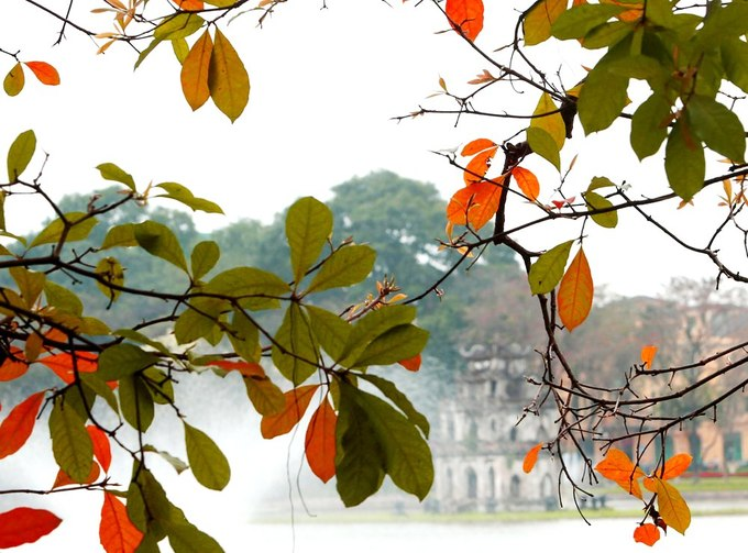 Hanoi has just been named as the best place to visit in March by Business Insider, and leaf-peeping around Hoan Kiem Lake was a reason that has been overlooked.