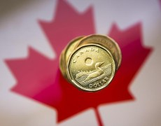 Forget Rate Decisions. Loonie Traders Bank on Canada Immigration By Bloomberg