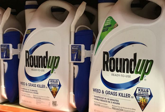 © Reuters. Monsanto Co's Roundup shown for sale in California