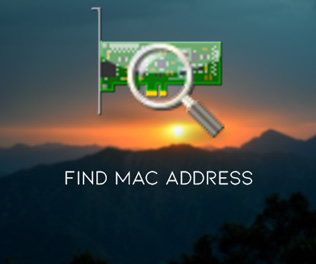LizardSystems Find MAC Address