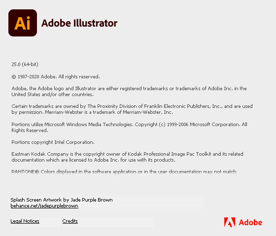 Adobe Illustrator 2021 v25.0.0.60