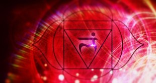 Root Chakra or the Muladhara