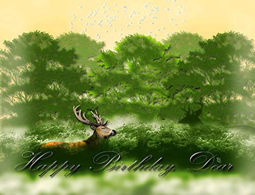 Dear Deer Birthday Free Birthday For Him Ecards Greeting