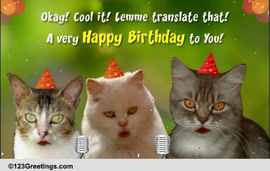 Cats Singing Happy Birthday Ecard